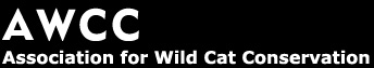 Wildkatzen Artenschutz - AWCC - Association for Wild Cat Conservation
